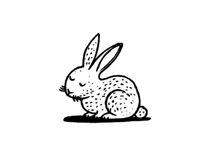tuktuk-rabbit